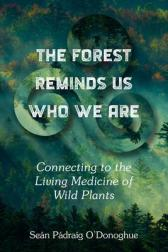 forest reminds us who we are