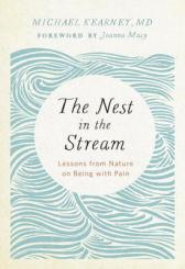 nest in the stream